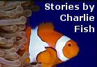 FICTION on the WEB short stories by Charlie Fish